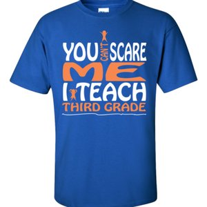 You Can't Scare Me I Teach Third Grade